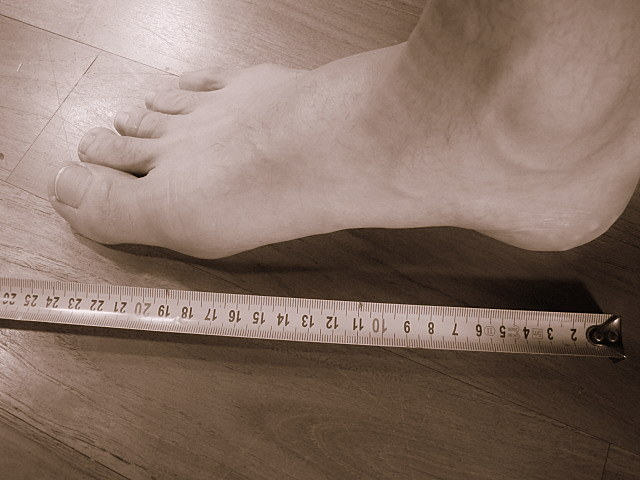 feet size - from the inch to the heel